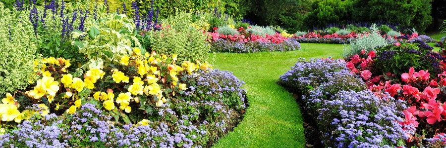 Why is marketing your business like gardening?
